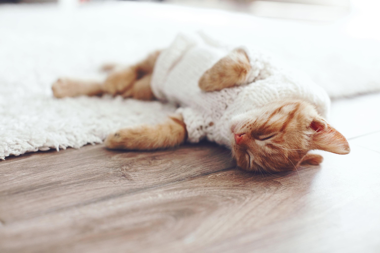 Ogrzewanie podłogowe – na jaki rodzaj podłogi najlepiej się zdecydować?